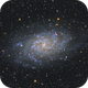 M 33- Triangulum Galaxy,                                Terrance