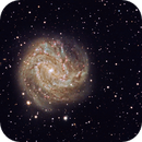 Southern Pinwheel (M83) from the Winter Star Party,                                Vincent Giranda