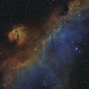Parrot (Seagull) Nebula; IC2177,                                Nico Carver