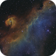 Parrot (Seagull) Nebula; IC2177,                                Nico Carver