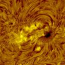 AR 2835-2836 h-alpha 2021-07-01,                                Nicolas Escurat
