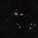 NGC 3169, NGC 3166, NGC 3165, and NGC 3156,                                Kurt Zeppetello