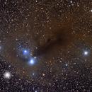NGC6729,                                peter_4059
