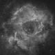 Rosette,                                ks_observer