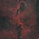 IC 1396A Elephant's Trunk Nebula,                                urmymuse