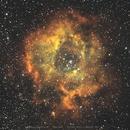 NGC2244 Rosette Nebula ,                                AndreP