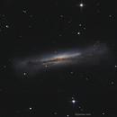 NGC 3628 The hamburger Galaxy,                                John
