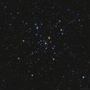 M41,                                Gary Imm