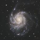 M101,                                yixiandave