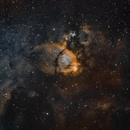 NGC 896 in SHO,                                gturgeon