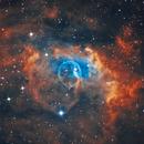 Bubble Nebula,                                Centenojoel