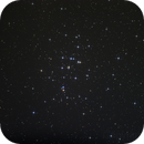 Messier 44,                                Ivo T.