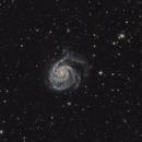 M101,                                petrbxd