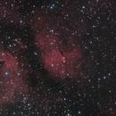 IC1318 - Butterfly Gamma Cygni Nebula /  Nébuleuse IC1318 Papillon,                                Tyco