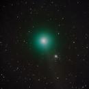 Comet C/2013 R1 - Lovejoy near M79 -- LRGB,                                Mike Mulcahy