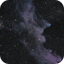 Witch Head Nebula,                                Mike Miller