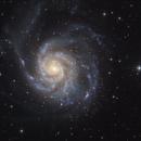 M101 Galaxy,                                Serge