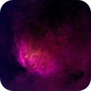 Tulip Nebula (HOS),                                Linda