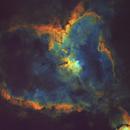 Heart Nebula - Starless,                                Barczynski