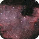 NGC 7000,                                Piotr Zawada