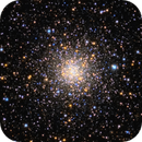 M56 in a Sea of Stars (April-May 2020),                                sunlover