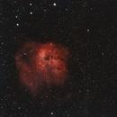 IC 410-The Tadpoles,                                gibran85