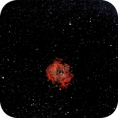 Rosette Nebula Samyang 135mm f2,                                George B Grimm