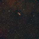 Bi-polar Nebula NGC6164 in RGB only,                                KiwiAstro
