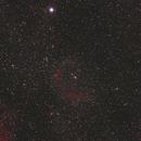 Sh2-129 Flying Bat Nebula,                                David Cocklin