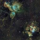 Nebuleuses & Amas in Dorado (N44 & N51 complexes),                                Los_Calvos
