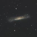 NGC3628 The Hamburger Galaxy,                                TimothyTim