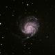 Messier 101 - The Pinwheel Galaxy,                                Johannes D. Clausen