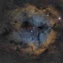 IC 1396 Elephant Trunk Nebula (2 panel mosaic),                                Jeremy Jonkman