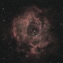 Rosette Nebula NGC2237,                                Bob Ford