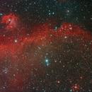 Seagull Nebula,                                J_Pelaez_aab