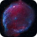 Sh2 308 Narrowband Dolphin Nebula,                                jerryyyyy