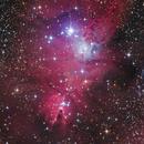 Christmas Tree Cluster and Cone Nebula,                                Jari Saukkonen