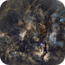 Arround Gamma Cygni SHO,                                Hartmuth Kintzel