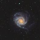 M 101 Pinwheel,                                Rhett Herring
