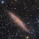 NGC 4945 - LRGB by Insight Observatory :-),                                Daniel Nobre