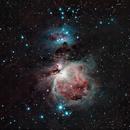 M42 Orion Nebula,                                Peter Komatović