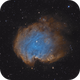 Monkey Head Nebula,                                Martin Palenik
