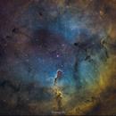IC1396-The Elephant trunk Nebula,                                KimKiDae