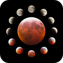 Total Lunar Eclipse January 20 2019,                                Debra Ceravolo