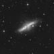 M82 - Bodes Cigar Galaxy - 14 Hours Luminance,                                Jonas Illner