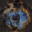ROSETTE NEBULA, NGC 2237, NARROW BAND SHO,                                Jaime Felipe Ramírez Narváez