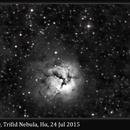 M20, Trifid Nebula, Hα, 24 Jul 2015,                                David Dearden