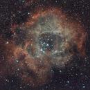Rosetta nebula,                                Frigeri Massimiliano