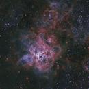 30 Doradus - The Tarantula Nebula,                                NocturnalAstro