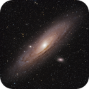 M31 - Andromeda Galaxy,                                Lee